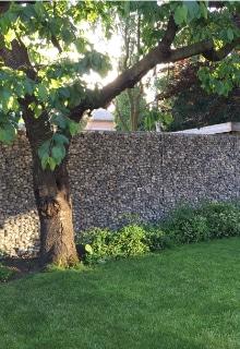 voorbeeld steenkorven